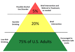 Pyramid of Alcohol Risk